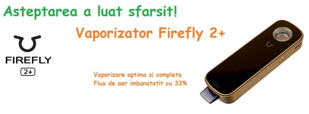 Vaporizator Firefly 2+ ierburi si dabs