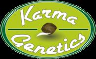 Karma Genetics